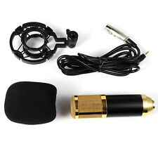 Condenser Microphone Home Recording Sound Studio Dynamic Mic + Shock Mount BM800