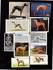 10 Different Vintage Whippet Tobacco/Candy Cards