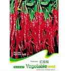 FD1233 Long Red Pepper Seed Vegetable Seed Spicy ~1 Pack 30 Seeds~ Free Shipping