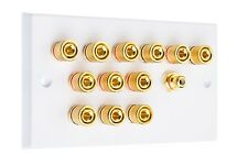 White 6.1 Surround Sound Speaker Wall Plate with Gold Binding Posts + RCA Socket