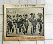 1915 Men Of The Shop Shows On Service In The Tropics Wearing Shorts