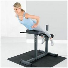 Roman Chair Bench Extension Fitness Workout Gym Lower Back Abdominal Weights ABS