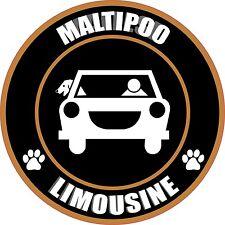 "LIMOUSINE MALTIPOO 5"" DOG PET TRANSPORT STICKER"