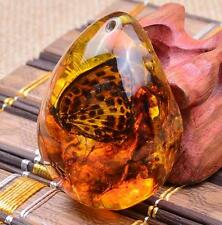 Beautiful Butterfly Amber Resin Amber Butterfly Insect Stone Pendant Necklace ✿