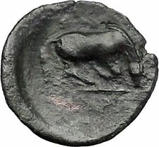 Larissa in Thessaly 360Bc Nymph Horse Authentic Ancient Greek Coin i49235