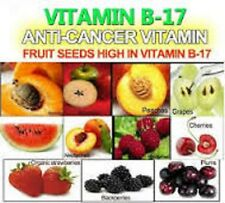 A World Without Cancer: The Story Of Vitamin B17, Presentation on plain DVD-R