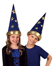 BOYS GIRLS KIDS WITCH WIZARD HAT FANCY DRESS COSTUME OUTFIT MEDIEVAL HEADCOVER