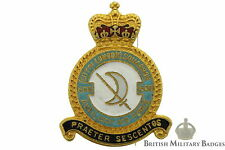 Queens Crown: Royal Air Force 600 Auxiliary Squadron Unit RAF Lapel Badge