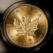 2017 Canada Silver Maple Leaf .9999 1 oz Silver Rare Encased in 24KT Gold Gilded
