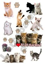 CHIOTS DE CAT: 9 autocollants rèsistant à l'eau CHATONS TUNING KITTENS STICKERS