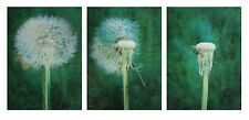 3D Postcard - Dandelion Animated - Gets Blown Away - Greeting Card