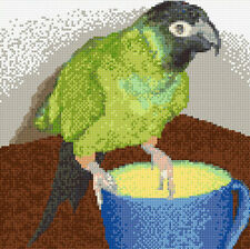 "Small Green Nanday Parrot - Cross Stitch Kit 10"" x 10"" - 14 Count Aida, Anchor"