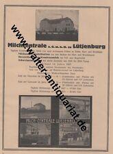 Milchzentrale Lütjenburg Milch Milchzucker Große Werbeanzeige von 1923 Reklame