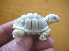 TURT-23) little white Tortoise Turtle shed ANTLER figurine Bali detailed carving