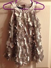 Biscotti Dress Baby Girl 18 Months Silver Floral 3D Petals Bids Satin Wedding