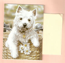West Highland Terrier Notecards Note Card Hitching A Ride Paul Doyle Pack of 5