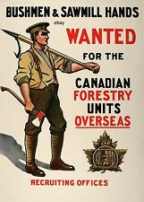 WW1 RECRUITING POSTER CANADIAN FORESTY UNITS BUSHMEN CANADA ARMY NEW A4 PRINT