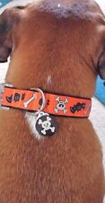 Dog Halloween Collar Skulls and Bats w Light Up Charm Size Medium