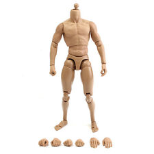 1:6 Scale Action Figure Male Nude 12'' Strong Muscular Body Plastic Hot Toys