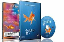 Baby and Kids DVD - Goldfish Aquarium shot in HD with long Scenes