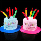 New Happy Birthday Plush Cake Hats With Candles Pink Or Blue Novelty Party Hat