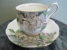 Royal Albert Bone China England Tea Cup & Saucer Hawthorn Flowers of the World