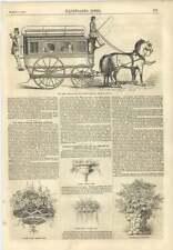 1856 il premio OMNIBUS London GENERAL anglo-francese COMPAGNIA Appeso piante