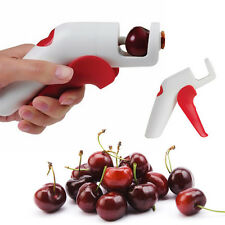 Cherry Olive Pits Pitter Stone Seed Remover Hand Held Corer Kitchen Tools New
