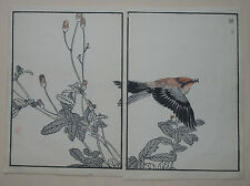 CROSSBILL 'Isuka' : ORIGINAL 1880s JAPANESE WOODBLOCK Birds Print By BAIREI
