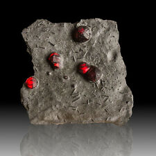"3.9"" Glowing Red ALMANDINE GARNETS in Graphite +Dravite Red Ember M MA for sale"