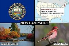 SOUVENIR FRIDGE MAGNET of THE STATE OF NEW HAMPSHIRE USA