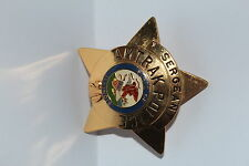 Metal Badge USA Police AMTRACK ILLINOIS Sergeant COLLECTOR Polizei Politie