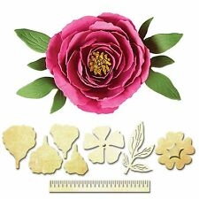 SPELLBINDERS CREATE A FLOWER PEONY CUTTING DIE D-LITES S2-165 NEW 2015