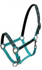 TEAL Nylon Horse Halter With Barbwire Design Overlay! NEW HORSE TACK!