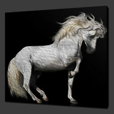 "WHITE HORSE PAINTING STYLE CANVAS WALL ART PICTURES PRINTS 12""x12"" FREE UK P&P"