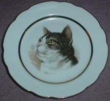 A J L Giftware Collectors Plate Tabby Cat #2