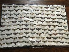 Pottery Barn Shadow box Butterfly Pillow Cover NWT Lumbar 16x26