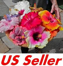 20 PCS Garden Giant Hibiscus Flower Seeds B71, Awesome Mixed Color Huge Flowers