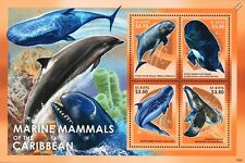 WHALE Stamp Sheet (Mammals of the Caribbean) 2013 St Kitts / Sea Marine Life #16