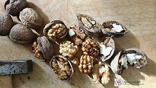 Greek Raw Walnuts Unsalted Organic 1 kg Nuts - 2.2 LB- 35.3 oz - Premiun Quality
