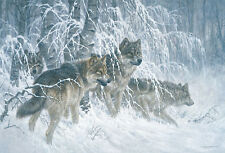 Larry Fanning Edge of Winter Animal Wolf Wolves Wildlife Print Poster 19x13