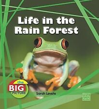 Life in the Rain Forest (Big Picture: Homes)