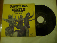 "PACIFIC GAS ELECTRIC""THE HUNTER-disco 45 giri BYG France 1970"""