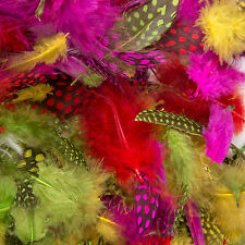 7g Pack of Small Natural Dyed Fancy Dress & Crafts Feathers - Spotted / Plain