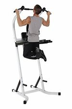 Pull Up Rack Stand Bar Chin Dip Tower Station Leg Raise Home Gym Workout Weight