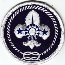 Boy Scout Badge from CHINA