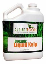 Liquid Kelp Organic Seaweed Fertilizer, 1 gallon of concentrate