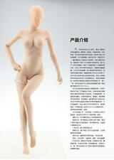 JIAOUDOL Model 1/6 seamless Body Figure Doll Female Rubber Skin Layer pale