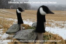 Sillosocks 3D Sentry Canada Goose Windsock Decoys 1dz 1081 by Sillosock Decoys