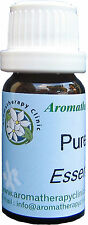 Pine essential oil 100% pure natural - therapeutic grade - 10 ml. - undiluted